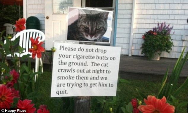 The Funniest Signs You've Never Read! - Image 27