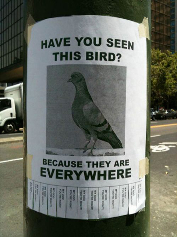 The Funniest Signs You've Never Read! - Image 34
